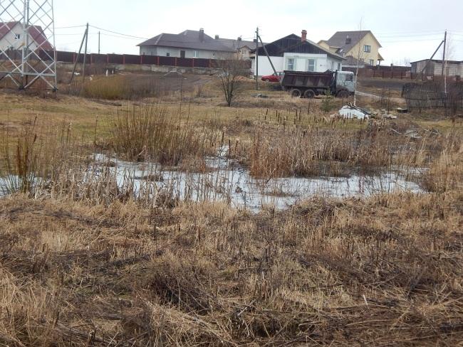 замерзшее болото, улица счастливая, тулово-1