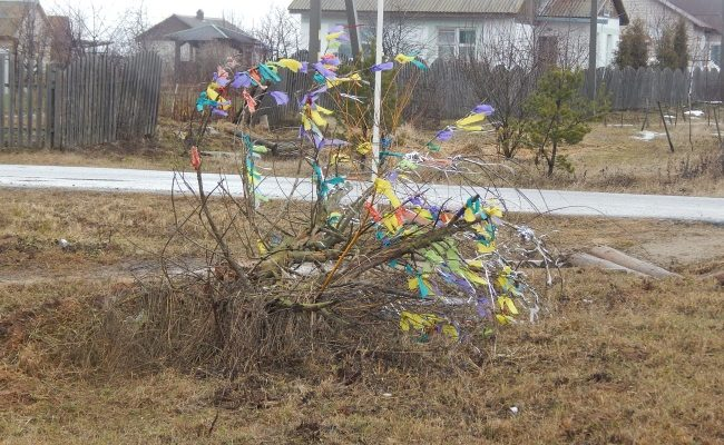 волшебное дерево, улица счастливая, тулово-1
