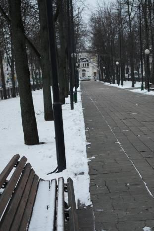 ...никто не пришел под липы, никто не сел на скамейку, пуста была аллея. Фото Анастасии Вереск