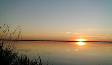 Лукомльское озеро летом. Фото Анастасии Вереск