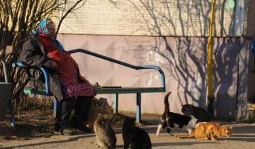 .... когда бабушки сидят у подъезда. Фото Анастасии Вереск