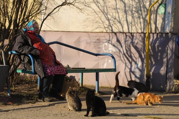 Самая «старая» и самая «молодая» область в Беларуси