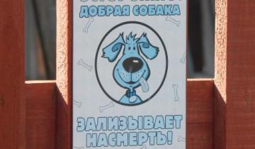 собака, злая собака, предупреждающий знак