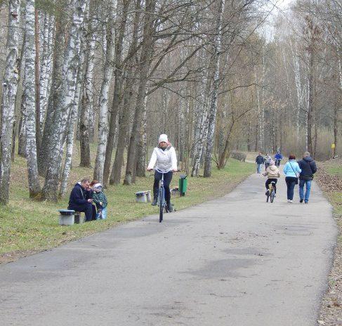 велосипед, велопрокат в Витебске, Мазурино