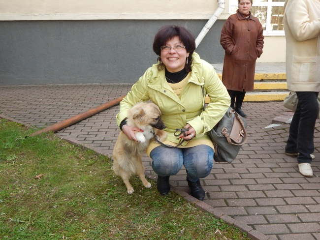 приют для животных, акция в областной библиотеке
