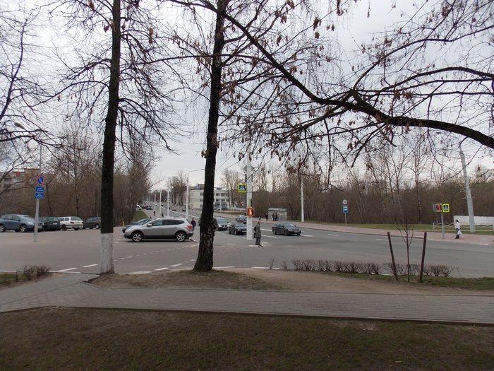 Витебск, Шрадер, Корженевский