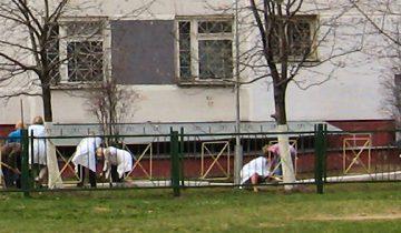 Фото minchanin.esmasoft.com