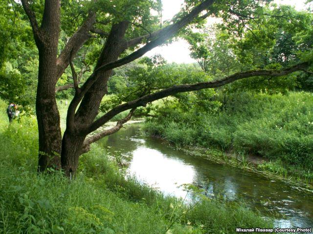 Местные жители утверждают, что здесь легко заблудиться. Фото svoboda.org