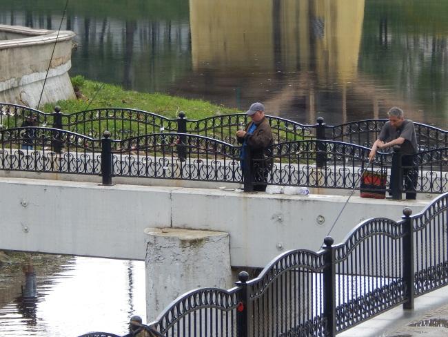 витьба, пушкинский мост, рыбаки