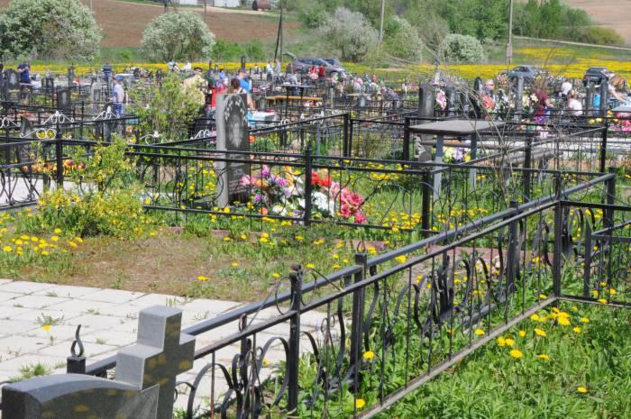Кладбище в Ольгово. Фото Анастасии Вереск