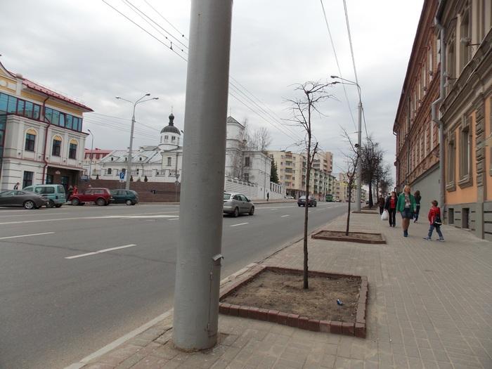 Витебск, поребрики, Корженевский