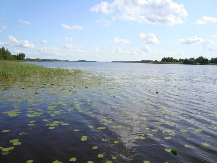 Озеро Нещердо. Фото prodavaika.ru