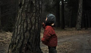 ребенок, заблудился в лесу
