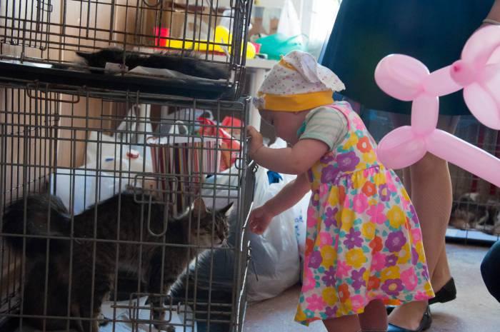 Особенно животные нравились детям. Фото Анастасии Вереск