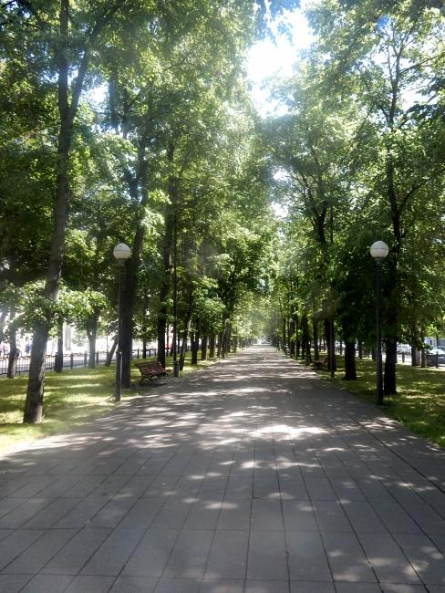 сквер. улица кирова