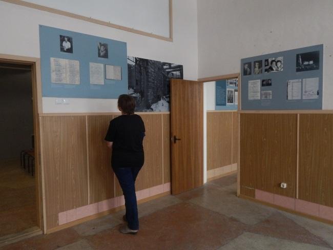 выставка во взэпе