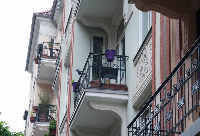 Для того, чтобы птицы не садились на балконы, здесь придумали вешать на перила вот таких вот подсадных ворон. Фото Анастасии Вереск
