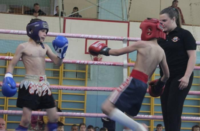 витебск, соревнования по кикбоксингу