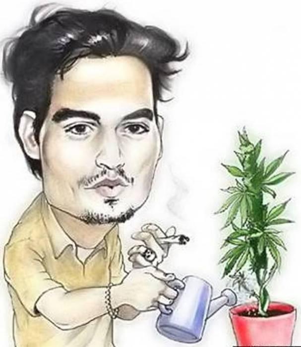 карикатура выращивание марихуаны