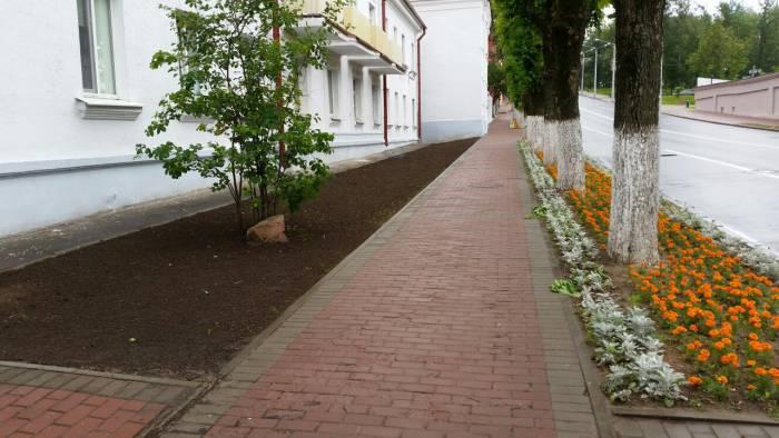 Газоны ко Дню города готовы. Фото: Аля Покровская