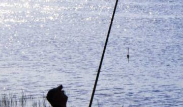 Какое же лето да без рыбалки? Фото Анастасии Вереск