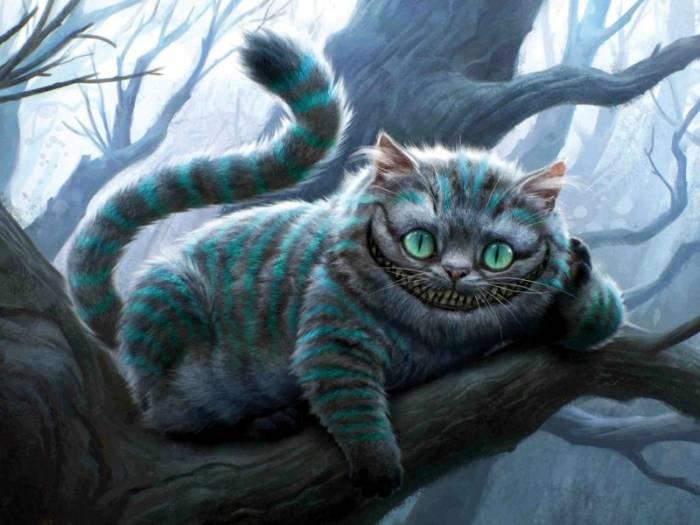 кот, алиса