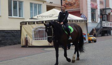 конь, улица суворова