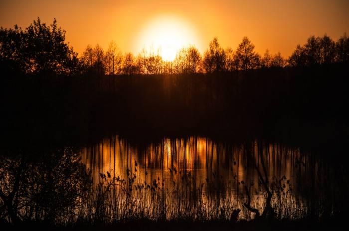 Черейское озеро, Чашникский район. Фото Анастасии Вереск