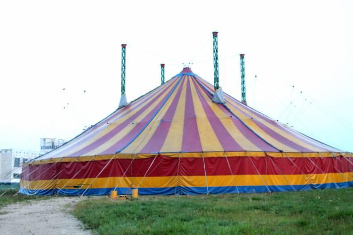 цирк, витебск
