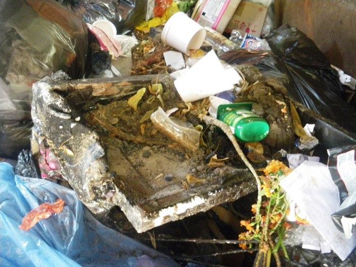 мусоровозка, мусор, Витебск, арт-объект, Корженевский