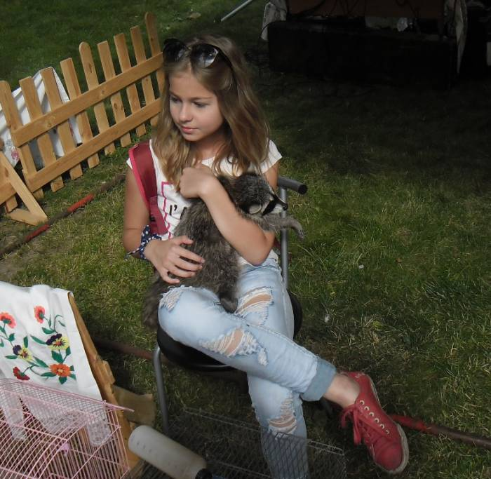 """витебск, """"славянский базар"""", необычные животные на фестивальных улицах"""