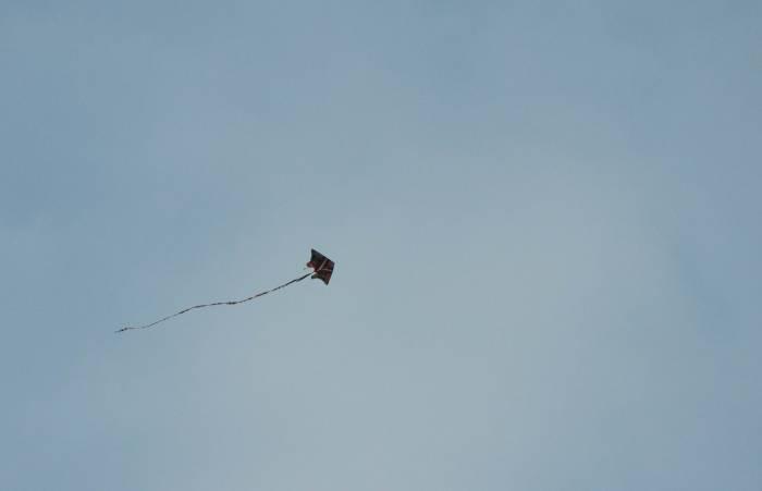Воздушные змеи на фестивале появились только в этом году. Фото Анастасии Вереск