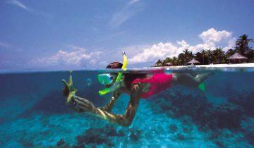 Дайвинг в прозрачных водах океана - одно удовольствие. Фото 1001fact.ru