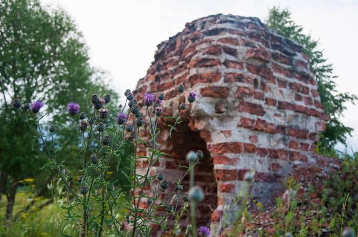 Руины Свято-Покровской церкви. Фото Анастасии Вереск