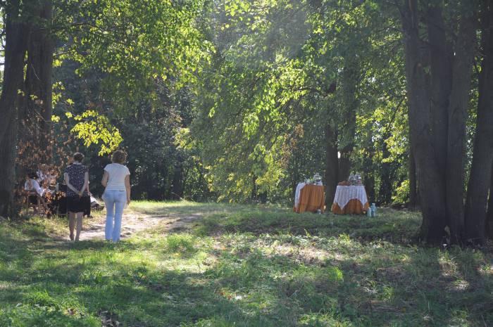 Столы накрыли прямо под кровом старинной аллеи. Фото Анастасии Вереск