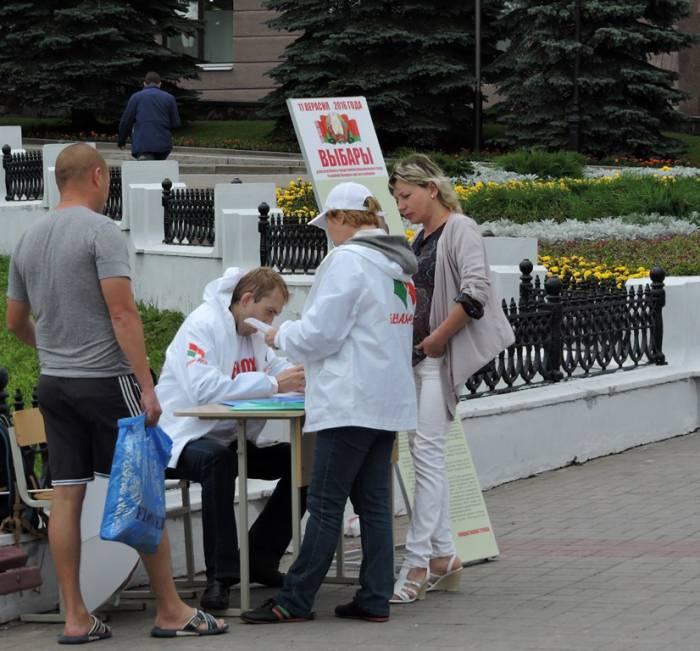 выборы, витебск, сбор подписей