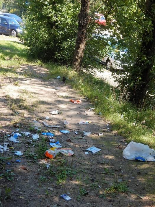 мусор, улица локомотивная