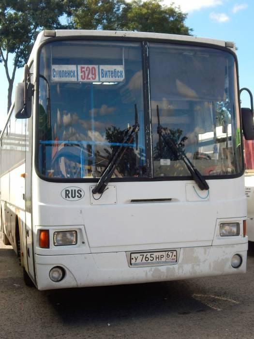 автобус, витебск