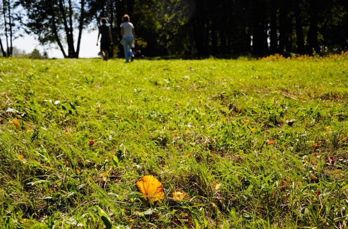 Осень уже здесь. Фото Анастасии Вереск