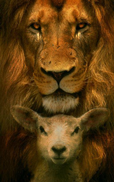 лев, ягненок, христианство, астрология, Корженевский