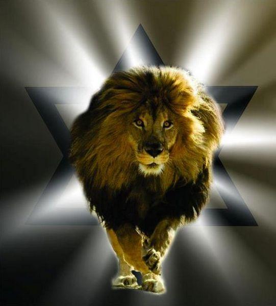 лев, астрология, иудаизм, Корженевский