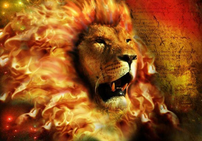 лев, астрология, Корженевский