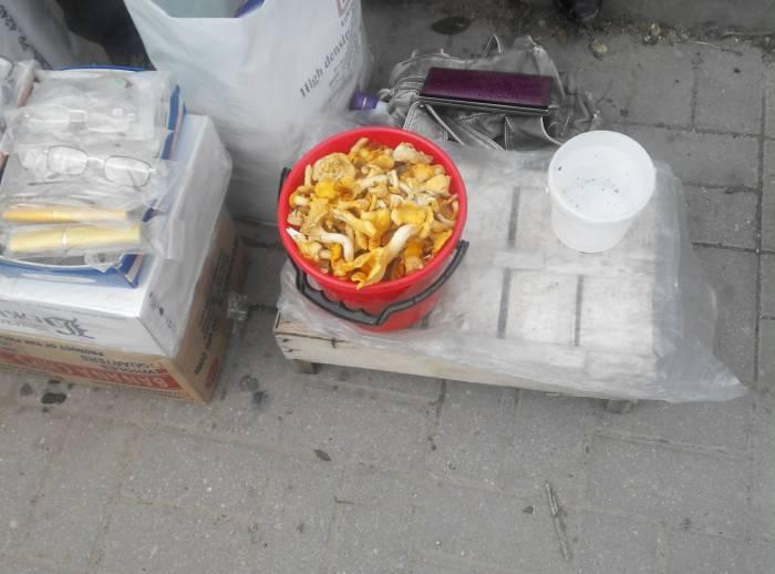 витебск, стихийный рынок, грибы