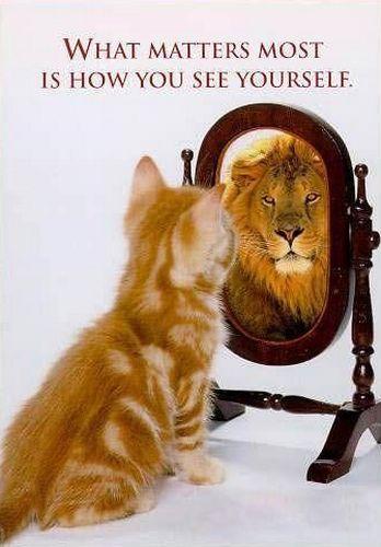 лев, кошка, психология, астрология, Корженевский