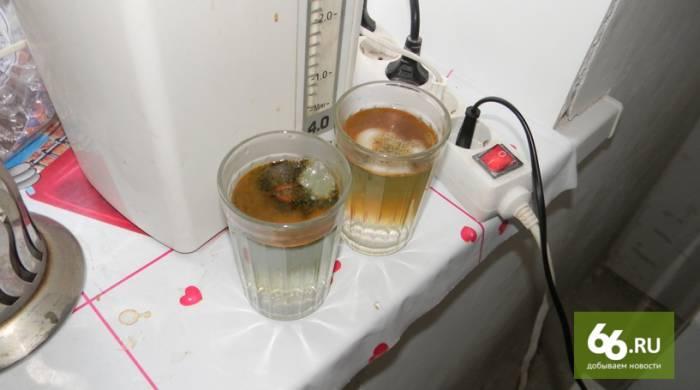 Так выглядит вода после электролиза. Фото s.66.ru
