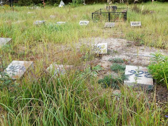 кладбище копти