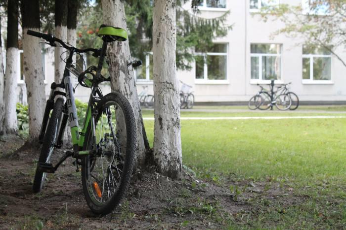велосипед, витебск