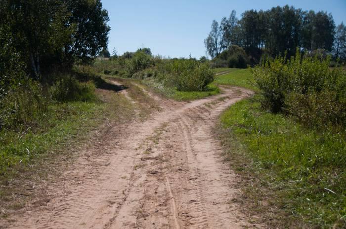 Дорога направо вела к Холопеничам, а сейчас выведет нас к городищу. Фото Анастасии Вереск