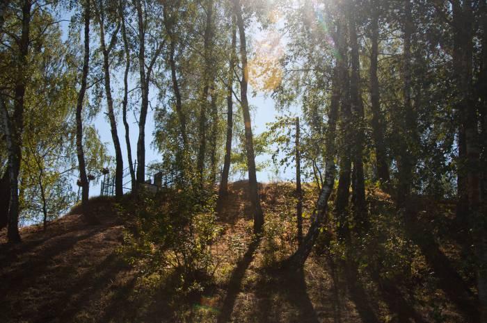 Вершина старинного городища. Фото Анастасии Вереск