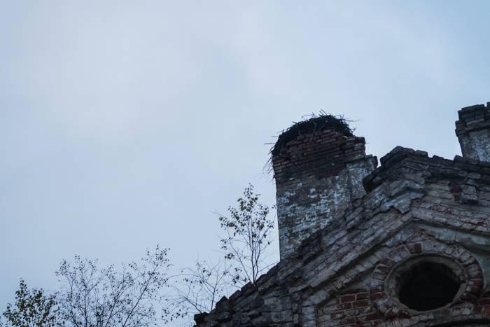 Храм не оставлен лишь птицами. Фото Анастасии Вереск